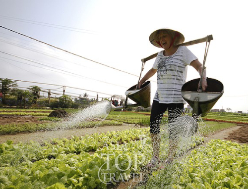 Hanoi Farm and Cook Tour