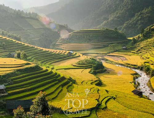 Rice terrace in Ha Giang