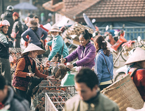 Bac Ha weekend market