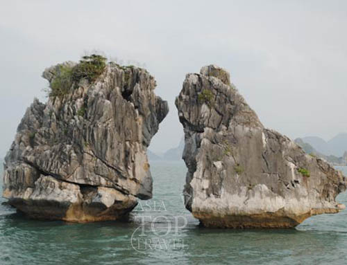 Fighting cock islet in Halong bay